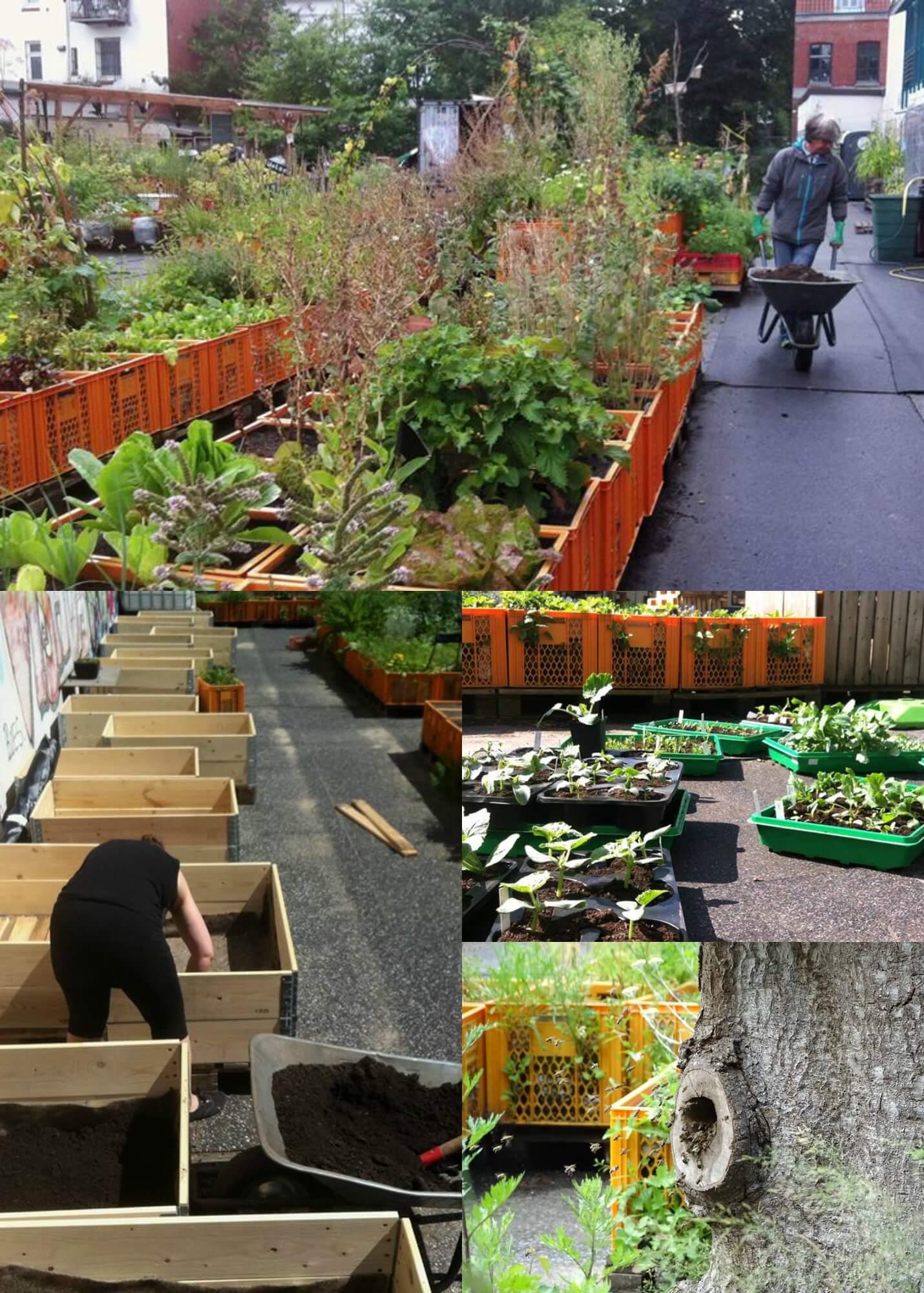 urban gardening f r jedermann auf dem gartendeck in st pauli steht dir alles zur freien. Black Bedroom Furniture Sets. Home Design Ideas